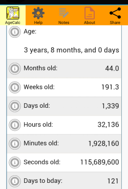 Age Calculator page middle