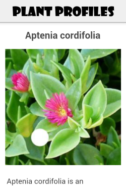 Succulent ID plant profiles page
