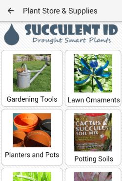 Succulent ID tutorials page