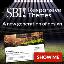 SBI Responsive templates work on every device